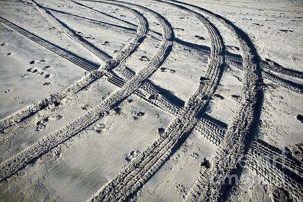 Tire Tracks And Footprints, Long Beach Peninsula, Washington Print by Paul Edmondson