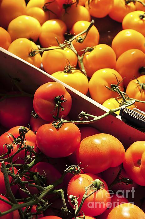 Tomatoes On The Market Print by Elena Elisseeva