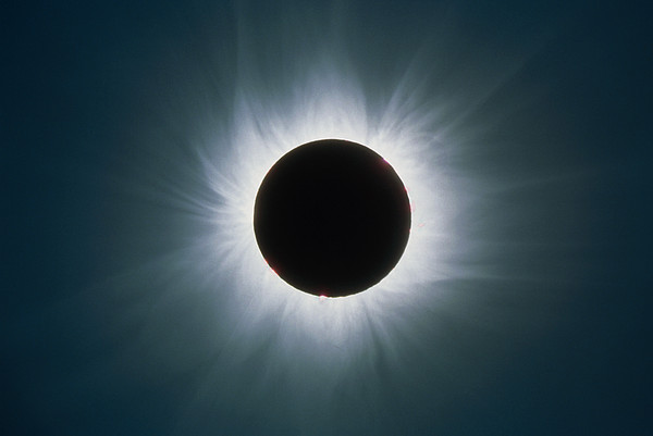 Total Solar Eclipse With Corona Print by Dr Fred Espenak