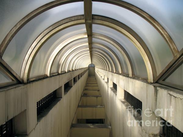 Underground Vault Print by Yali Shi