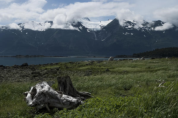 View From Haines Print by Diana Nikolova