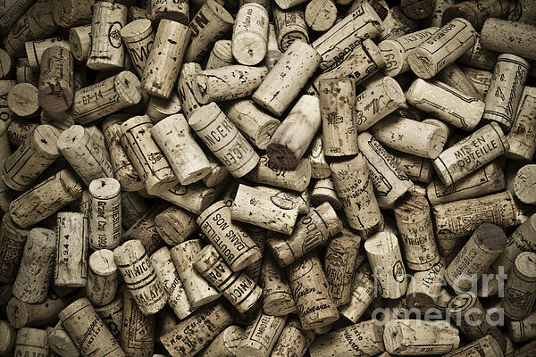 Vintage Wine Corks Print by Frank Tschakert