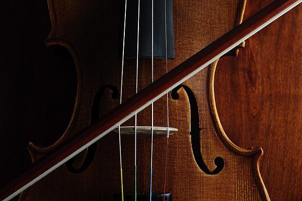 Violin Print by Nichola Evans