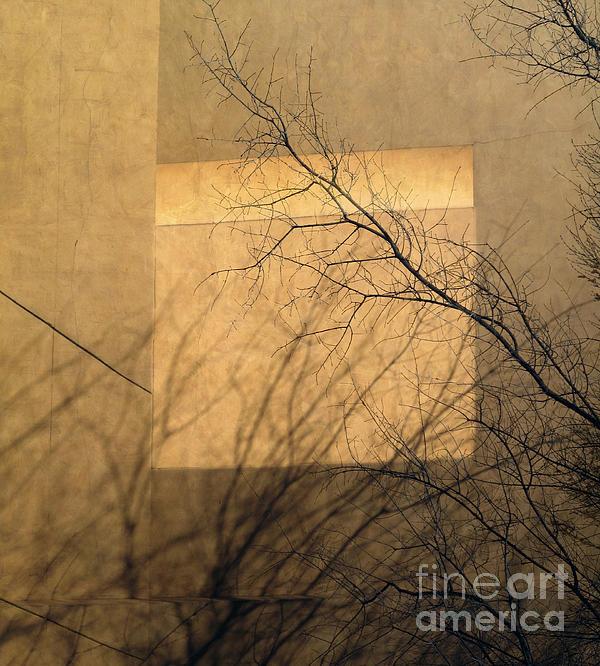 Jon Blumenaus - Window