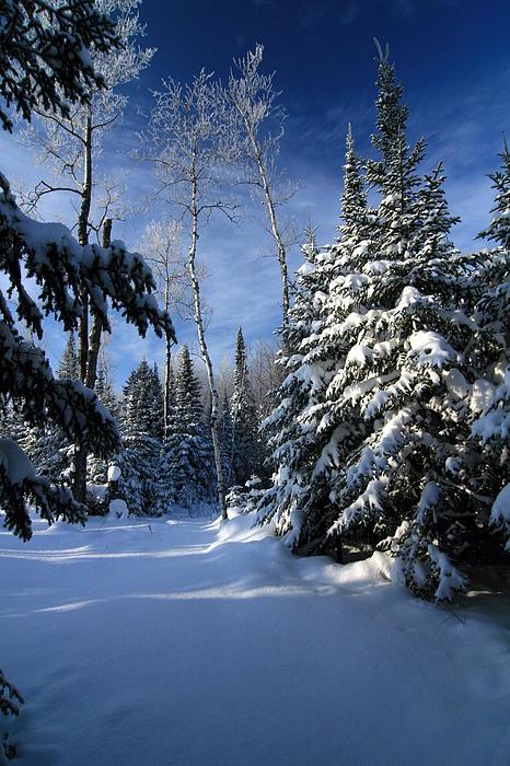 Rick Rauzi - Winter Wonderland