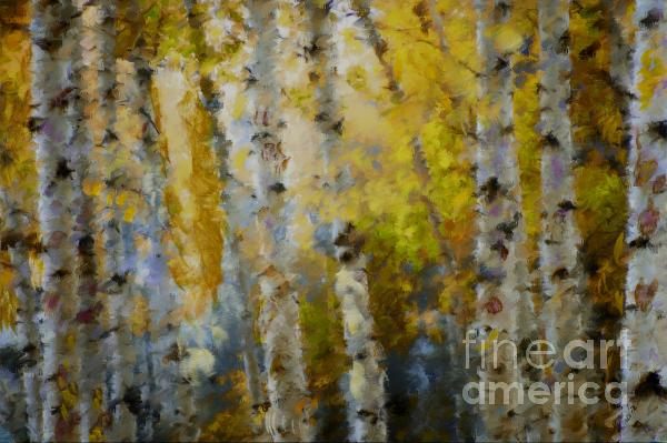 Yellow Aspens Mixed Media  - Yellow Aspens Fine Art Print