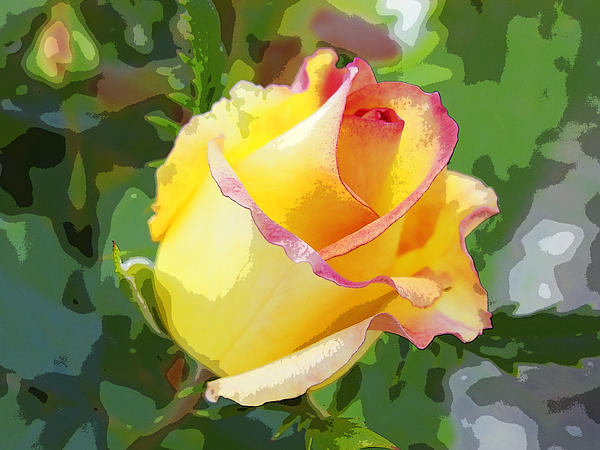 Yellow Rose Print by Anne Mott