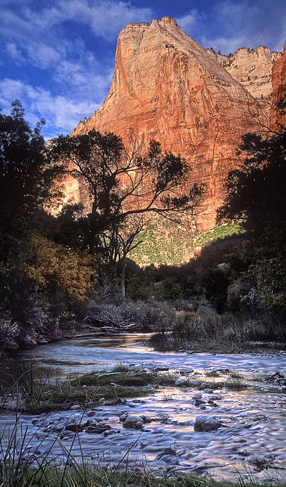 Zion National Park View Print by Dave Mills