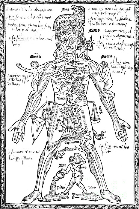 Zodiac Man, Medical Astrology Print by Science Source