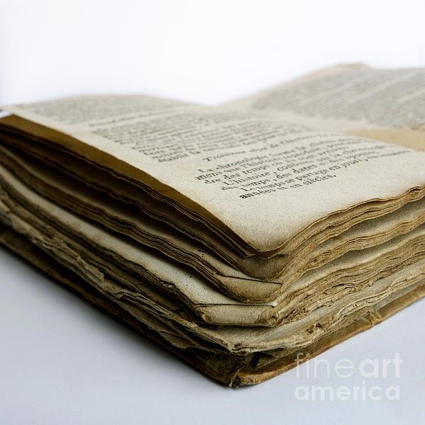 Old Book Print by Bernard Jaubert