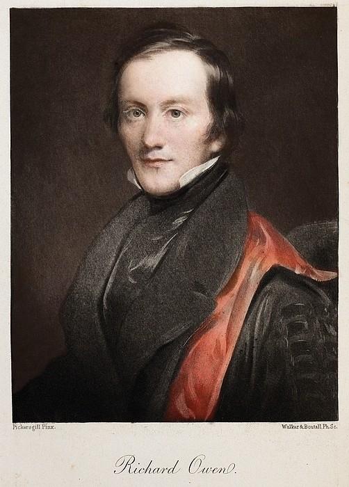 1841 Richard Owen Coined 'dinosaur' Print by Paul D Stewart
