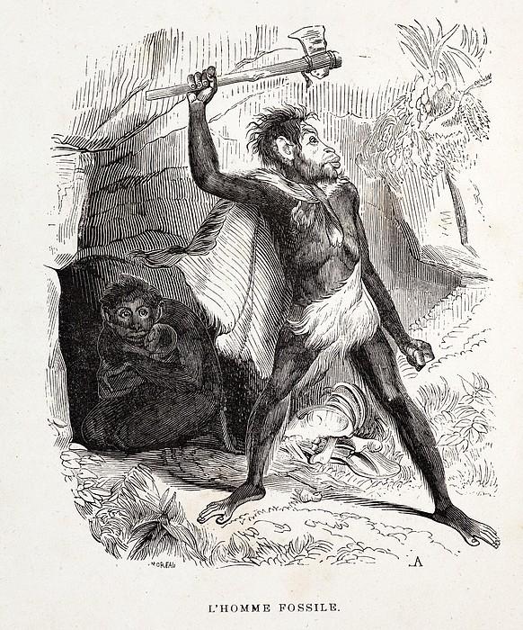 1861 Fossil Man By Boitard Print by Paul D Stewart