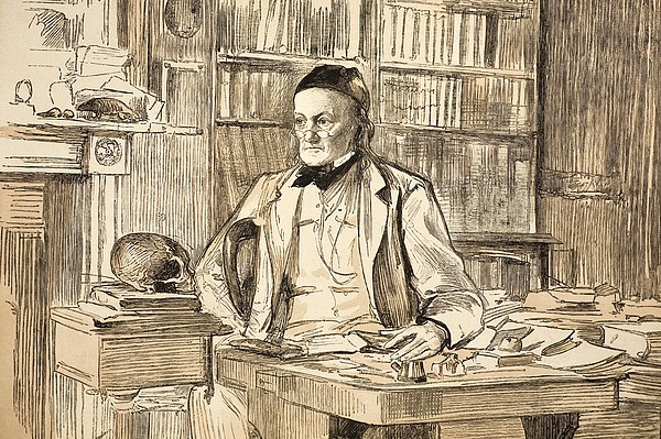 1883 Richard Owen's Study Ex Bmnh Print by Paul D Stewart