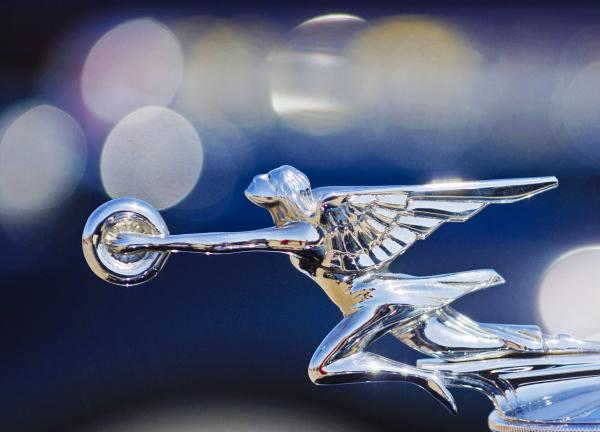 1932 Packard 12 Hood Ornament Photograph