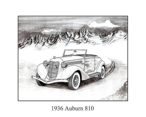 1936 Auburn 810 Print by Jack Pumphrey