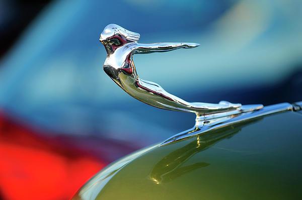 1936 Cadillac Hood Ornament 2 Print by Jill Reger