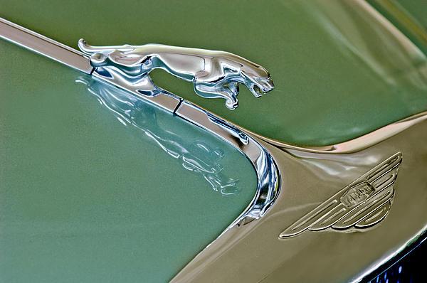1966 Jaguar Hood Ornament Print by Jill Reger