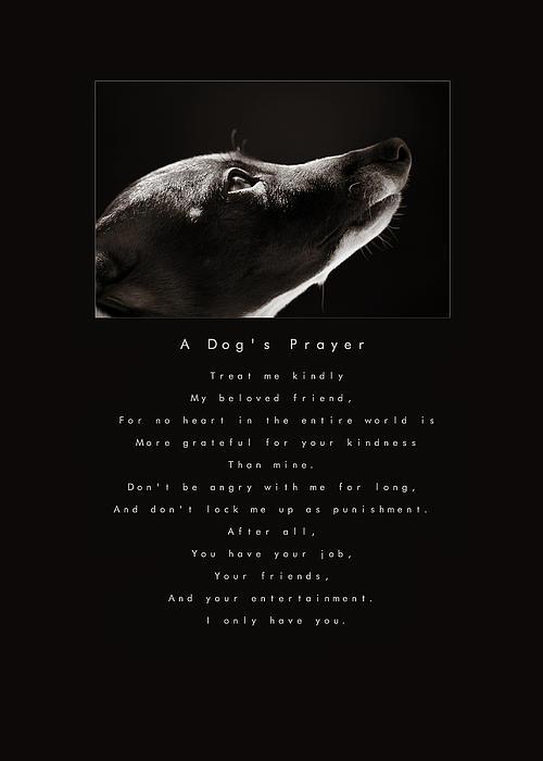 A Dog's Prayer Print by Angela Rath
