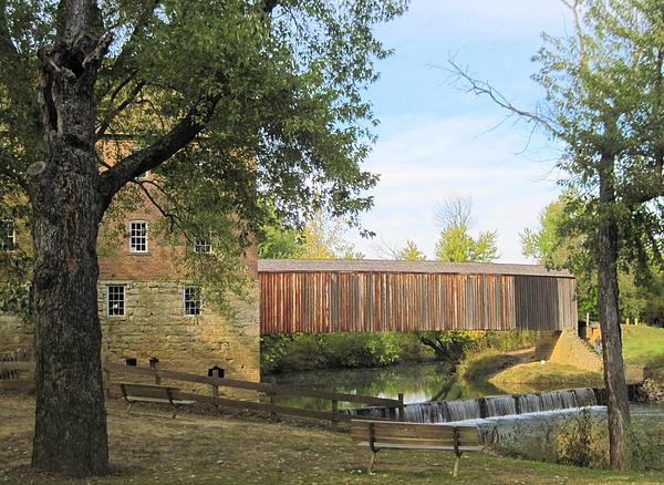 Perry Paliga - Bolinger Mill