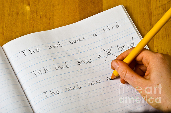 Dyslexia Testing Print by Photo Researchers, Inc.