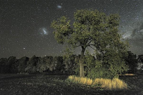 Milky Way Over Parkes Observatory Print by Alex Cherney, Terrastro.com
