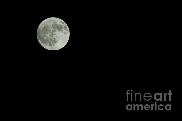 Moon Print by Odon Czintos