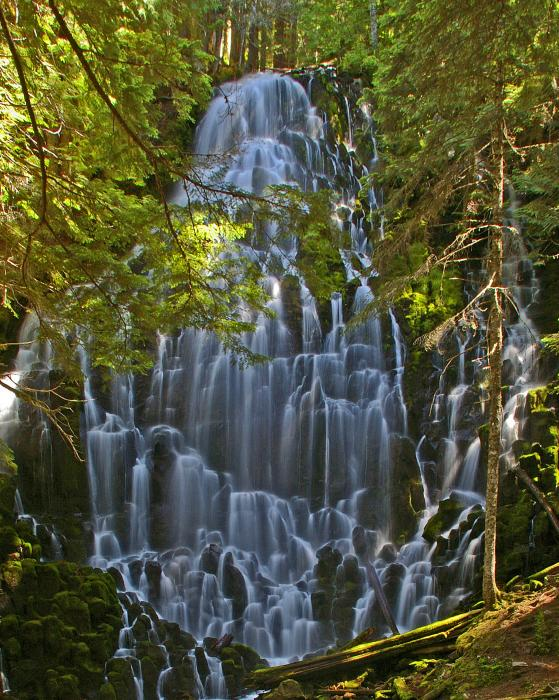 Ramona Falls Oregon Print by Ulrich Burkhalter