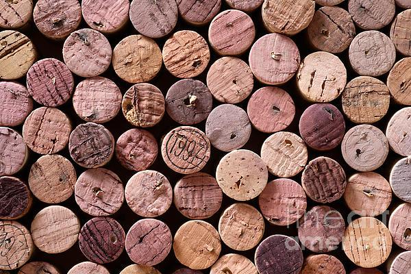 Red Wine Corks Print by Frank Tschakert
