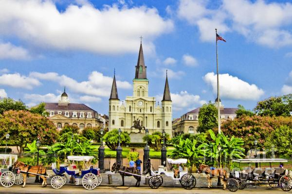 St. Louis Cathedral Print by Scott Pellegrin