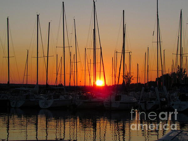 Sunset Marina  Print by France Laliberte