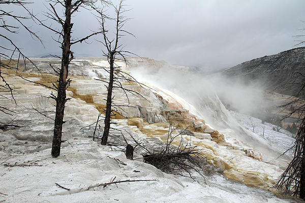 Yellowstone Mammoth Hot Springs Print by Pierre Leclerc Photography