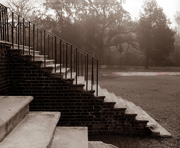 28 Up And Down Steps Print by Jan Faul