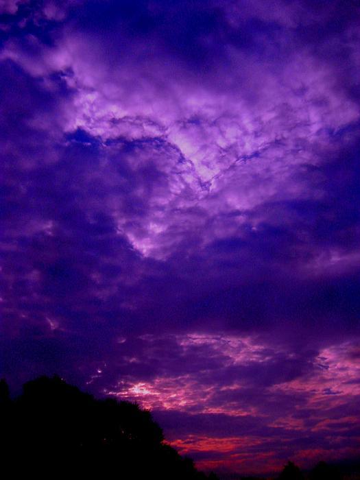 Allen n Lehman - Early Morning Light