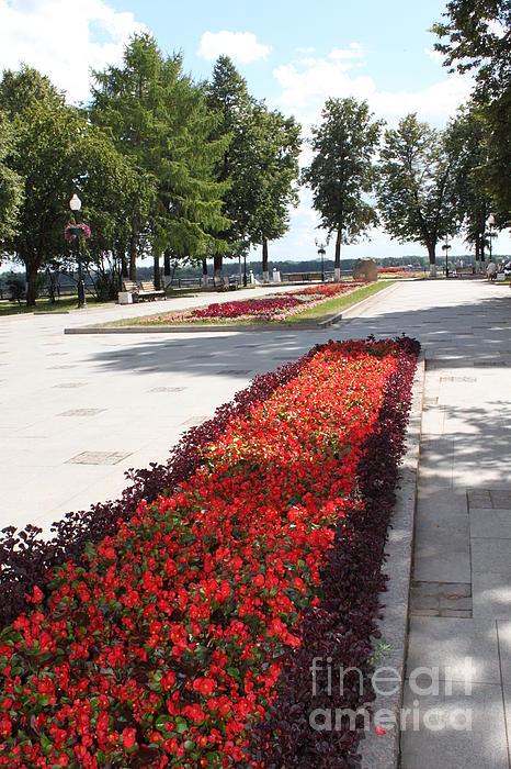Evgeny Pisarev - Flowers