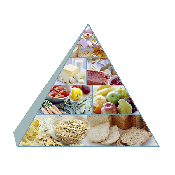 Food Pyramid Print by David Munns