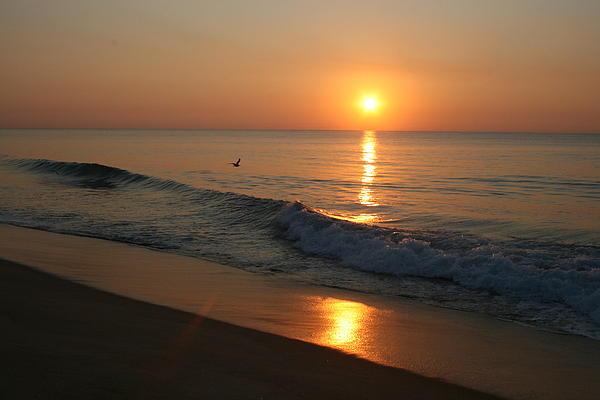Valia Bradshaw - Sunrise