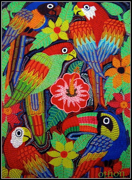 Kathleen Othon - Birds of Panama