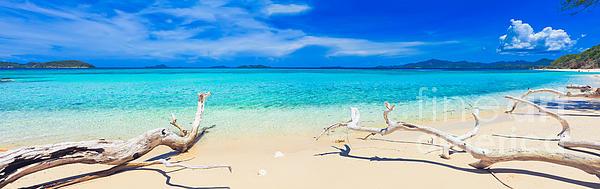 Tropical Beach Malcapuya Print by MotHaiBaPhoto Prints