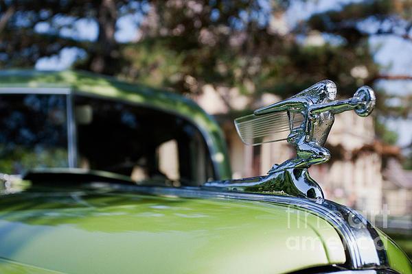 41 Packard Print by Alan Look