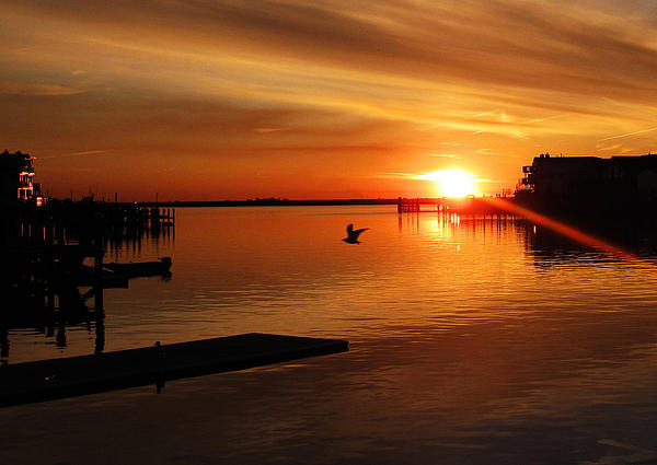 Bay Sunset Print by Mary McCusker