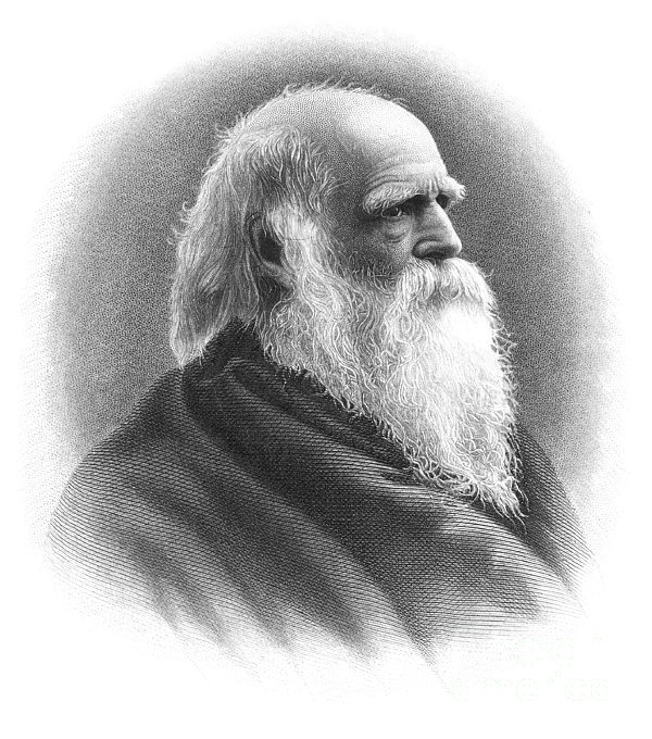 William Cullen Bryant Print by Granger