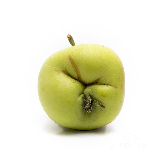 Apple Print by Bernard Jaubert