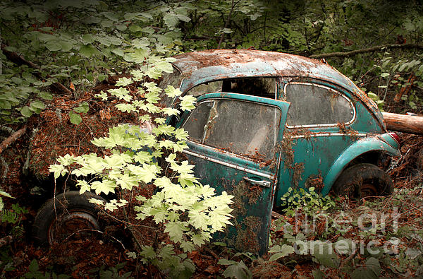 A '65 Bug In The Overgrowth Print by Michael David Sorensen