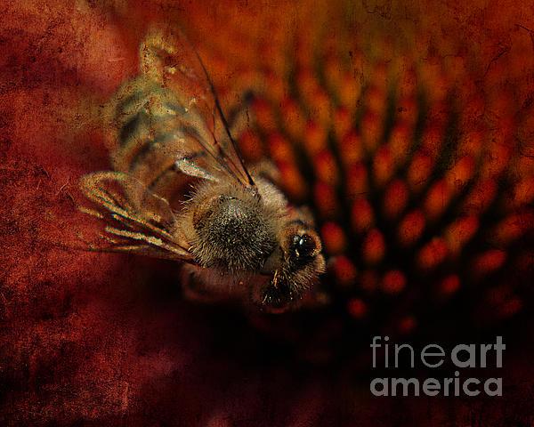 a Bee Print by Billie-Jo Miller