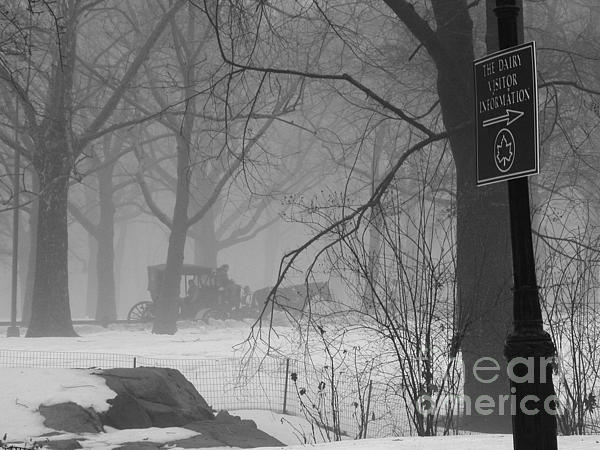 A Central Park Carriage Ride Print by Karen Sanabria