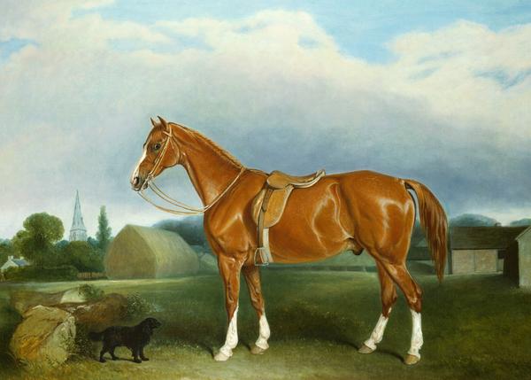 A Chestnut Hunter And A Spaniel By Farm Buildings  Print by John E Ferneley