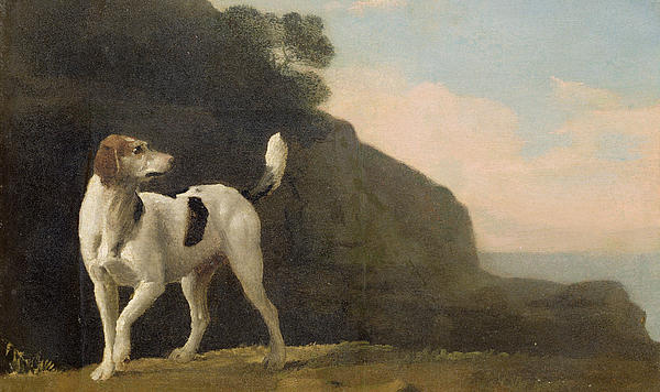 A Foxhound Print by George Stubbs