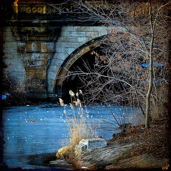 A Frozen Corner In Central Park Print by Chris Lord