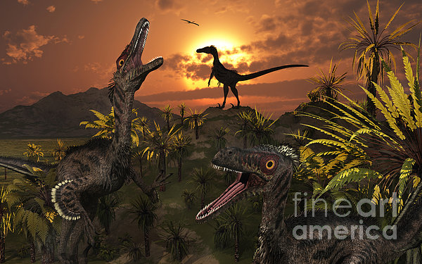 A Group Of Feathered Carnivorous Print by Mark Stevenson