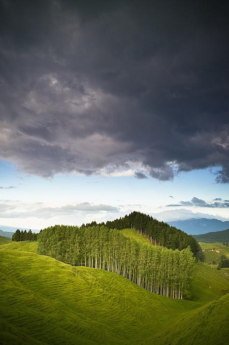 A Lush Green Landscape With Grassy by David DuChemin